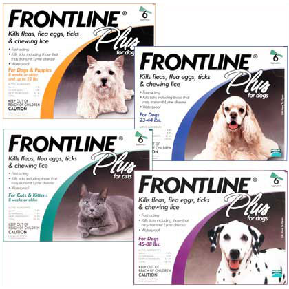 Does Frontline For Dogs Work On Cats